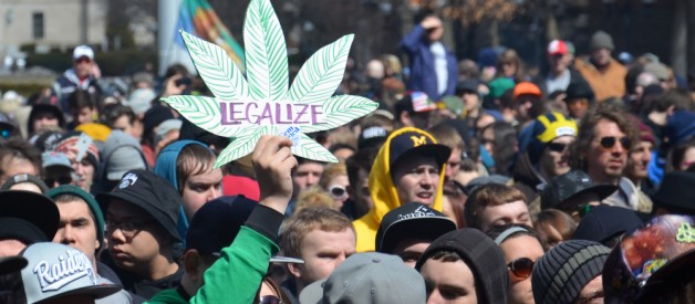 legalize pot and cannabis picture